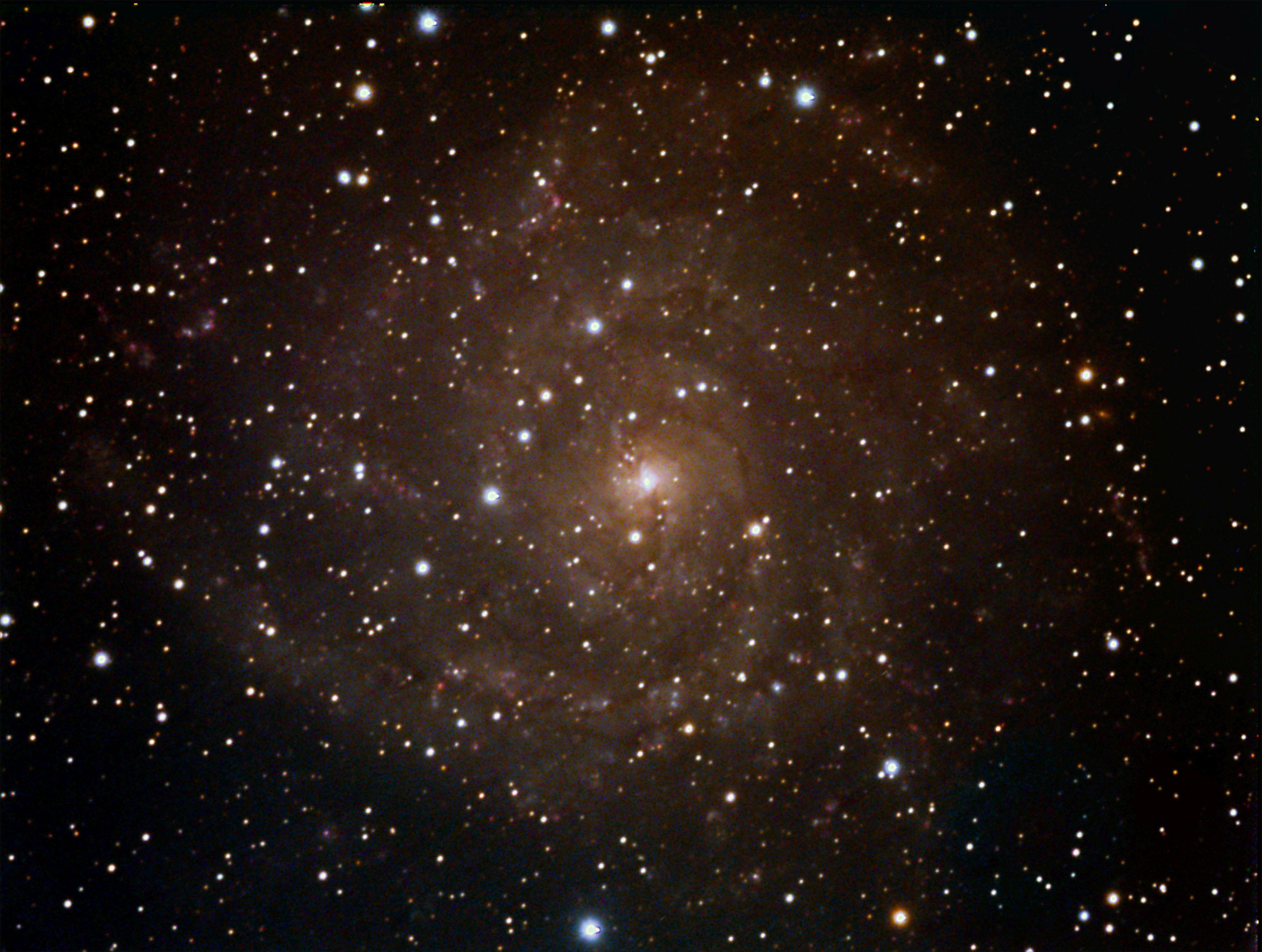IC342 Una bella Galassia